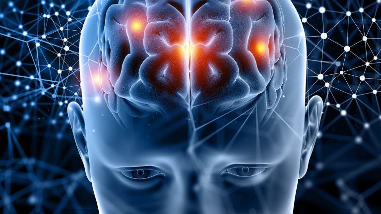 ROUNDMAP-Brain